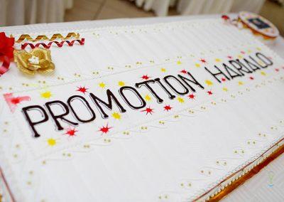 0481_Sortie de promotion_INSCAE_16-06-17