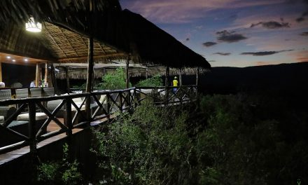 Safari à Madagascar : Black Lemur Camp