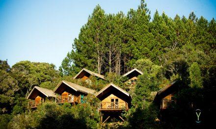 Ymagoo visite Saha Forest Camp